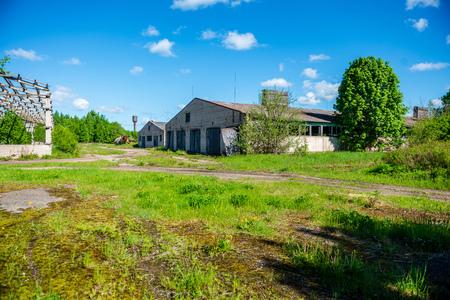 vecchio interno di una fattoria abbandonata in verdi cespugli estivi summer