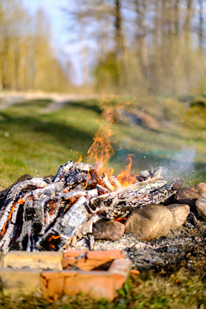 open fire burning logs in field with green grass with blur background and stones around fireplace