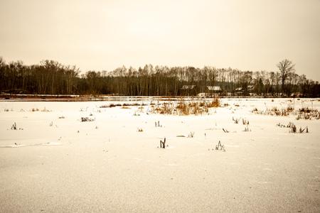 frozen ground texture in winter countryside. cloudy day