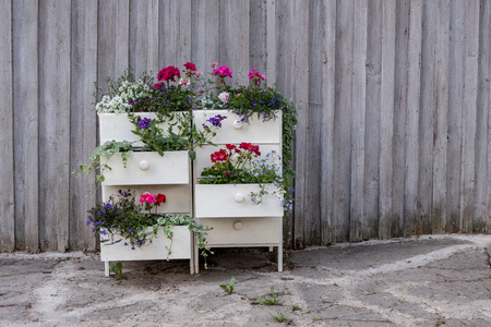 flower stand made from old drawer in garden, country Stock Photo - 122833558