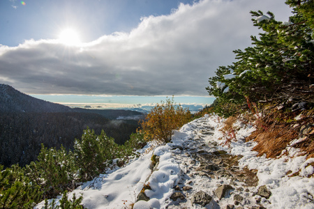 snow covered tourist trails for hiking in slovakia tatra mountains. sunny winter day with clouds and blue sky 写真素材