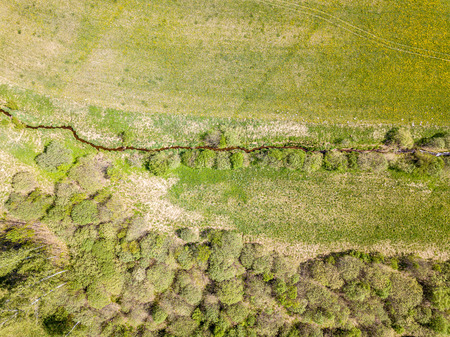 aerial view of countryside fields and forests in green summer day, sunny landscape. drone image Foto de archivo
