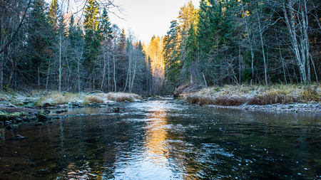 scenic river view landscape of forest rocky stream with trees on the shores. beautiful light