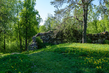 stone brick ruins of old building. fortress walls in green countryside 写真素材