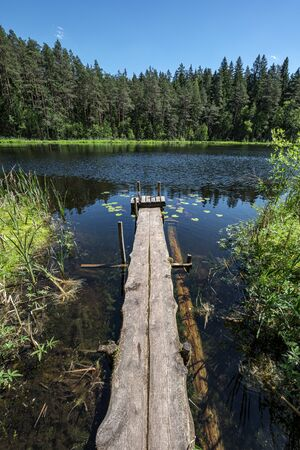 Bonito paseo marítimo de tablones de madera se inclina hacia el lago azul con orillas verdes y cielo azul en el campo de verano
