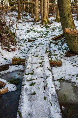 wooden plank footbridge pathway in winter under snow cover 免版税图像