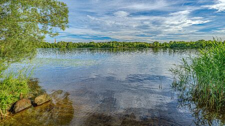 forest lake in summer with dramatic clouds and green vegetation Stok Fotoğraf