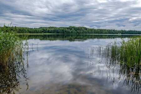 forest lake in summer with dramatic clouds and green vegetation Stock Photo