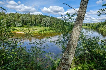 river Gauja in Latvia, view through the trees in summer day
