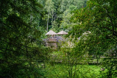 wooden castle palace in forest. summer green foliage and sunny day Zdjęcie Seryjne