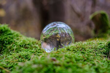 crystal glass ball against autumnal nature background with reflections in it. orange tree leaves