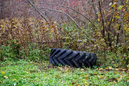 abandoned tire from large car in natural meadow. waste disposal
