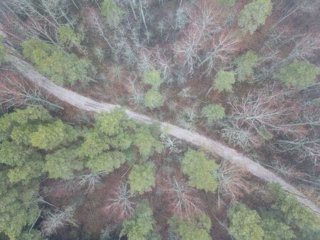 fog over forests and lakes in countryside. drone image from above. aerial Stock fotó