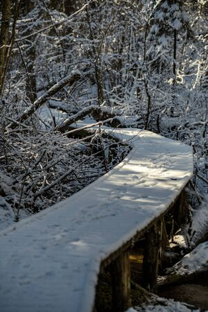 snowy pathway for walking in forest in winter, sunny day with stairs under snow