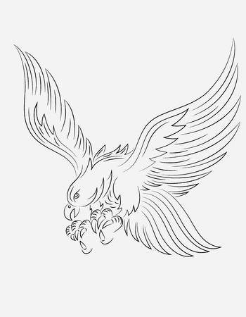 eagle flying: Eagle flying, art vector outline Illustration