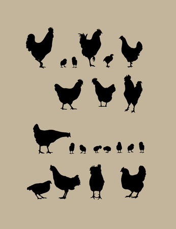 Rooster and Chicken Silhouettes, art vector design