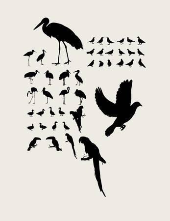 egret: Stork and Heron Silhouettes, art vector design