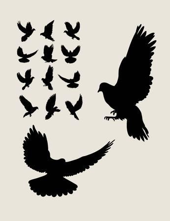 dove flying: Dove Flying Silhouettes, art vector design Illustration