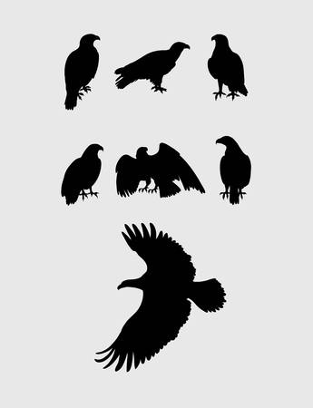 goshawk: Eagle Silhouettes, art vector design