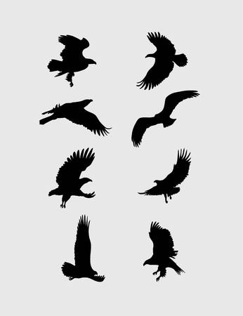 goshawk: Eagle Flying Set Silhouettes, art vector design