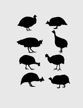 Guinea Fowl Silhouettes, art vector design Illustration