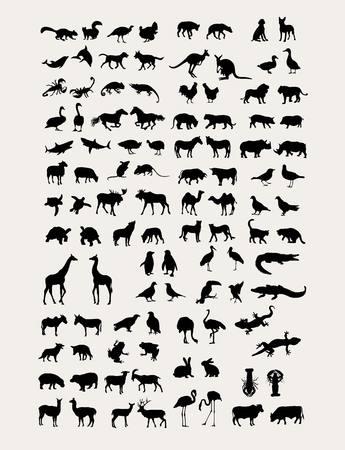 Collection Animal Silhouette, design artistique Vecteurs