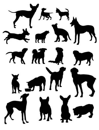 lapdog: Dog Silhouettes, art design Illustration