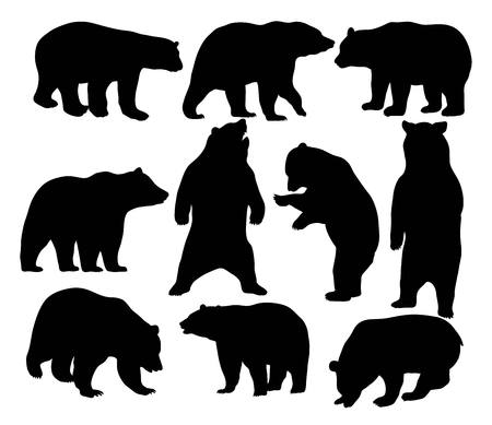 wildlife: Bear Wildlife Silhouette Animal, art vector design