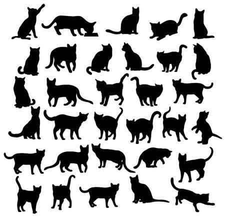 애완용 동물, 고양이 실루엣, 아트 벡터 디자인