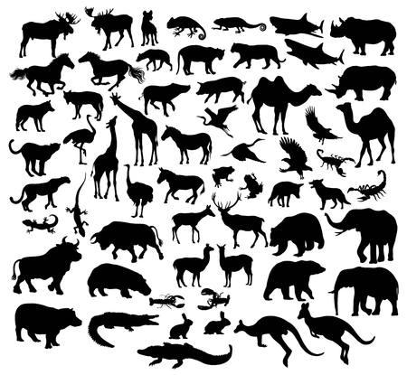 様々 な野生動物のシルエットや家畜、アートのベクトルのデザイン