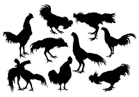 Silhouette of a variety of rooster, art vector design Vector Illustration