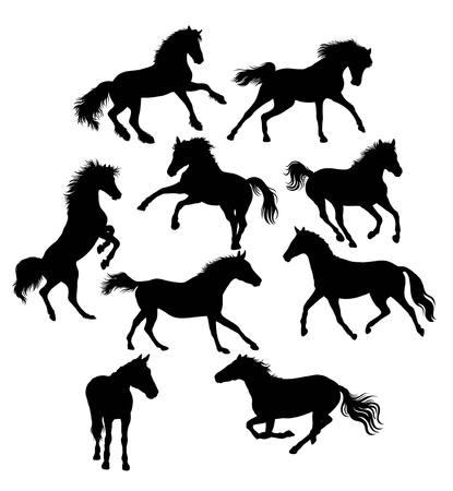 Silhouette of Action and Activities Horses, illustration art vector design