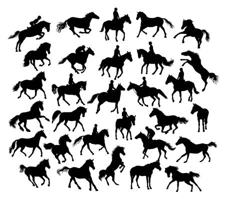 equestrian: Equestrian Sport and Horse Activity Silhouettes, illustration art vector design