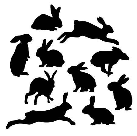 Silueta del conejo lindo, diseño de ilustración, vector