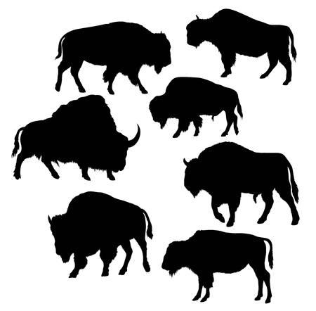 Bison Wild Bull Silhouettes, conception de vecteur artistique Banque d'images - 68571117