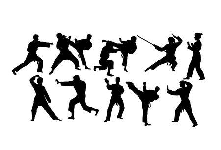 Karate Sport Activity Silhouettes, art vector design Illustration