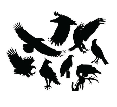 Adler-Vogel-Silhouetten, Kunstvektordesign