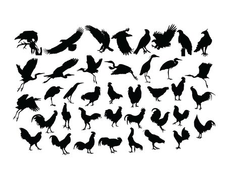 Bird And Rooster Silhouettes, art vector design