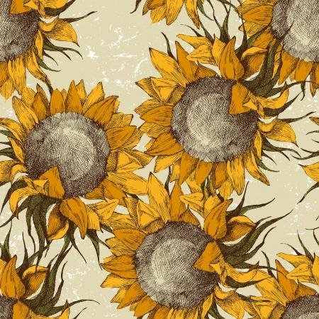 semillas de girasol: Ornamento sin fisuras de la vendimia con girasoles Vectores