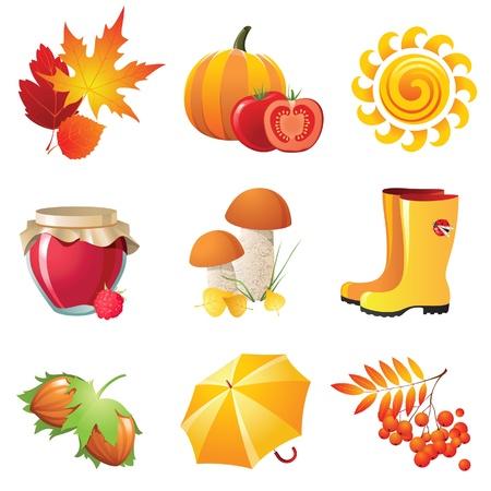 Vogelbeere: Helle Herbst Icons für Ihre Entwürfe