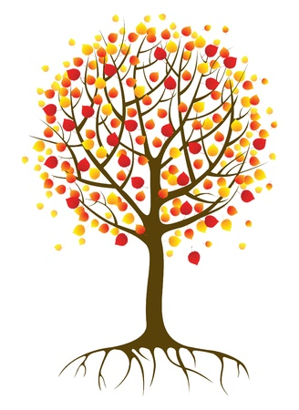autumn tree Stock Vector - 14257324