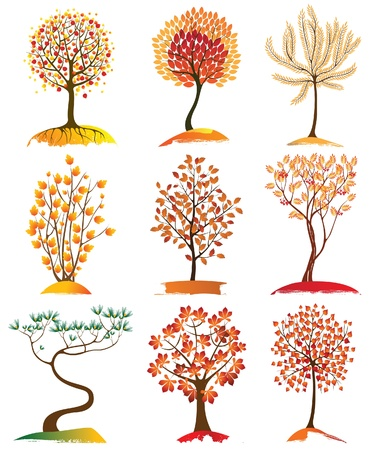 9 highly detailed autumn trees Vector