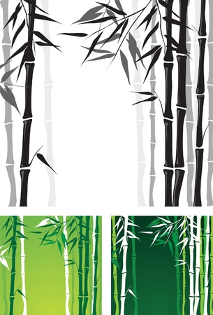 bamboo background Stock Vector - 14257282