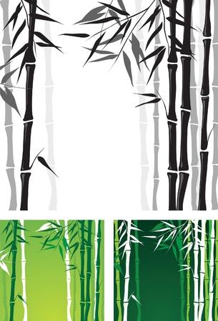 kelet ázsiai kultúra: bambusz háttér Illusztráció
