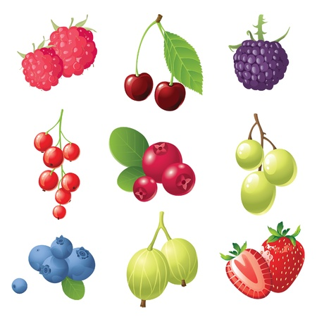 cranberry illustration: 9 sweet berries icons set