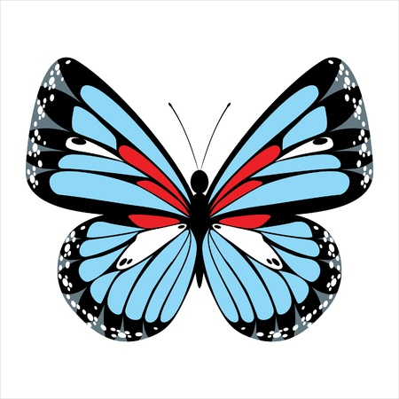 stylized butterfly icon Stock Vector - 14257284
