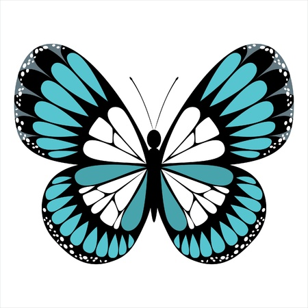 stylized butterfly icon Stock Vector - 14257268