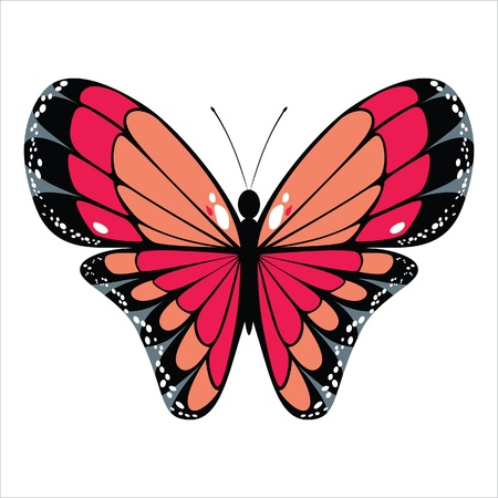 butterfly isolated: stylized butterfly icon