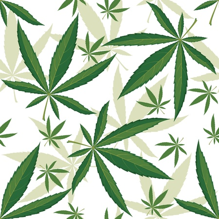 cannabis: Cannabis seamless ornament over white background Illustration
