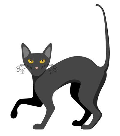 cartoon  cat: black cat Illustration